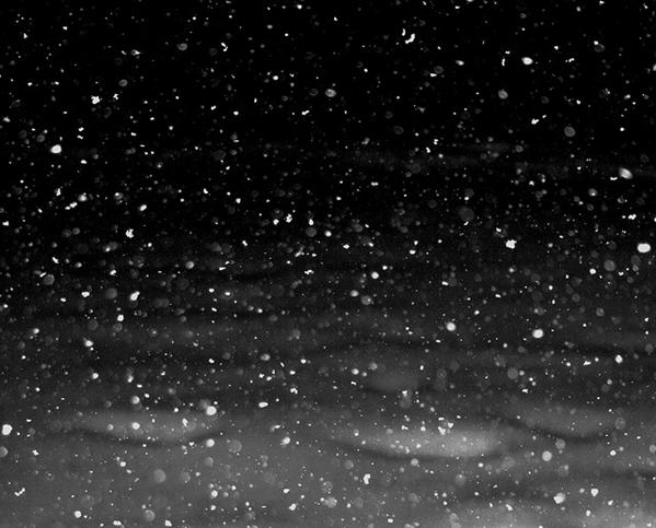 free-snowflakes-falling-at-night-texture-for-layers-creative-commons