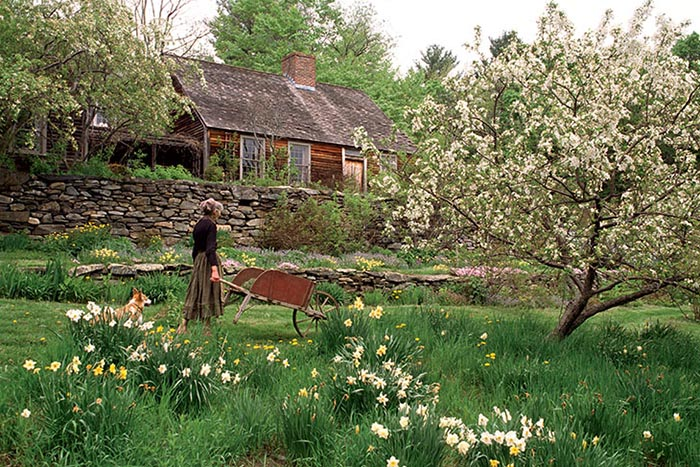 old woman in garden pushing a wheel barrow near plants, stone wall and cabin