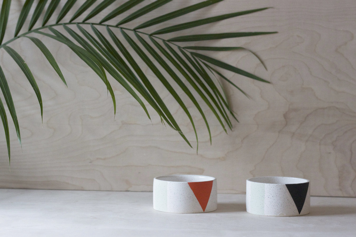 palm branch in front of a grain wood background featuring two white ceramic pet bowls with an orange triangle and black triangle